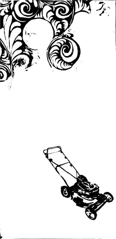 Detail (Digital File)